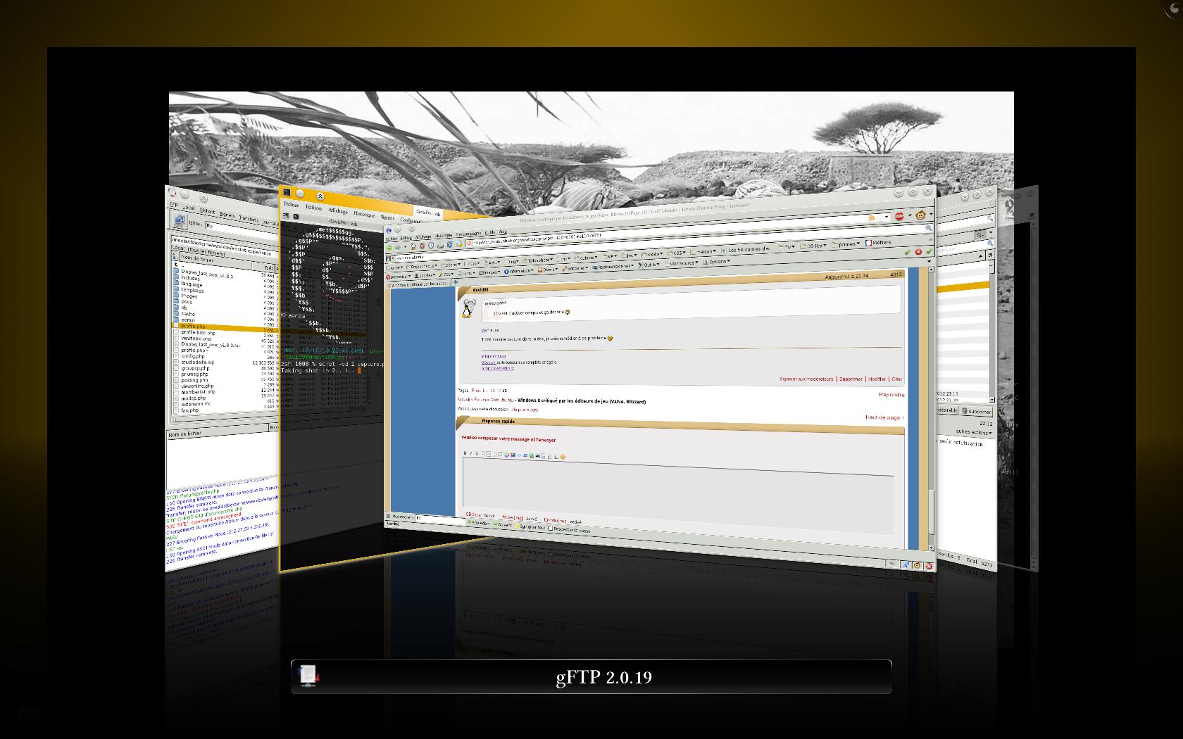 Kwin documentation ubuntu francophone for Gestionnaire de fenetre