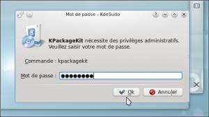 Enter your password.